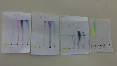 20121128142534-cromatografia.jpg