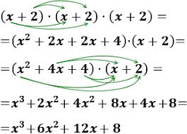 20190220094036-polinomis-pic1.png